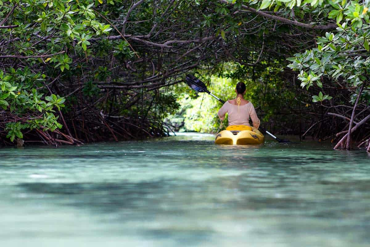 Woman kayaking in mangroves on Bonaire.