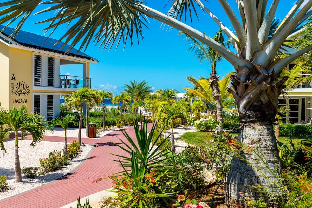 Tropical gardens at Delfins Beach Resort on Bonaire.