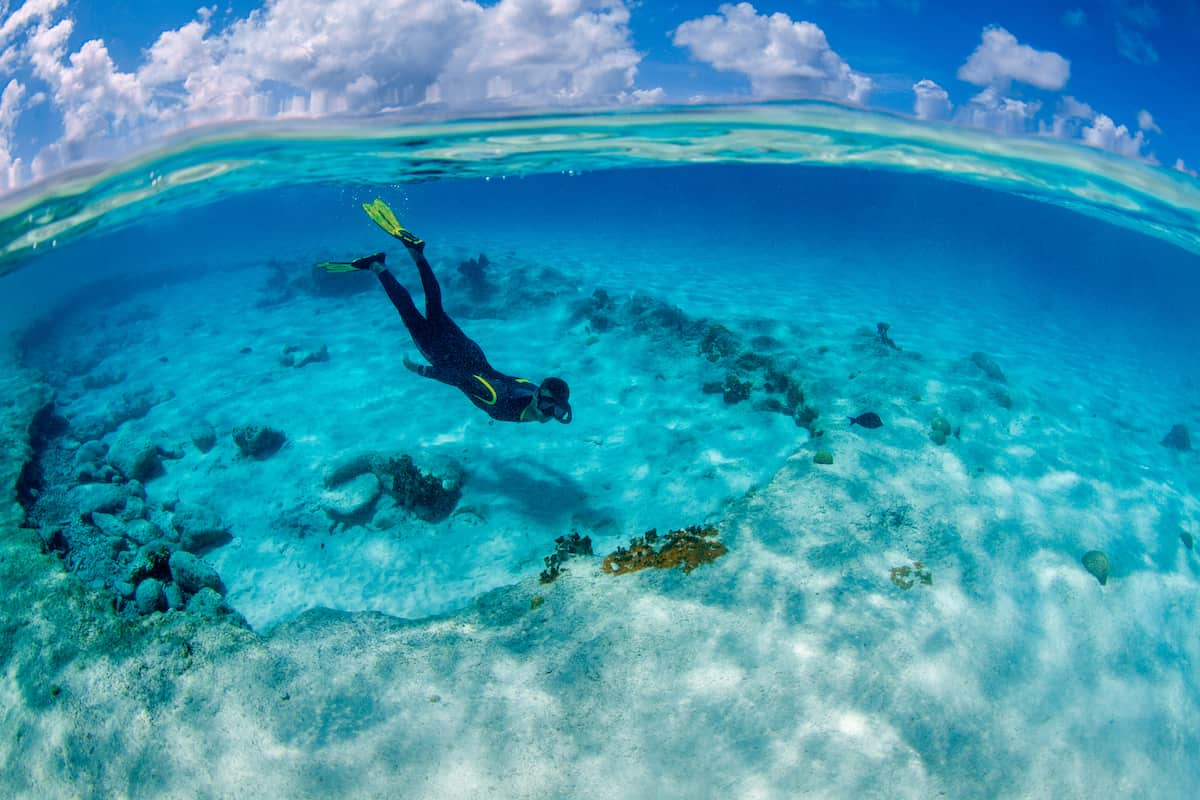Person diving off a reef near a diving hotel on Bonaire.