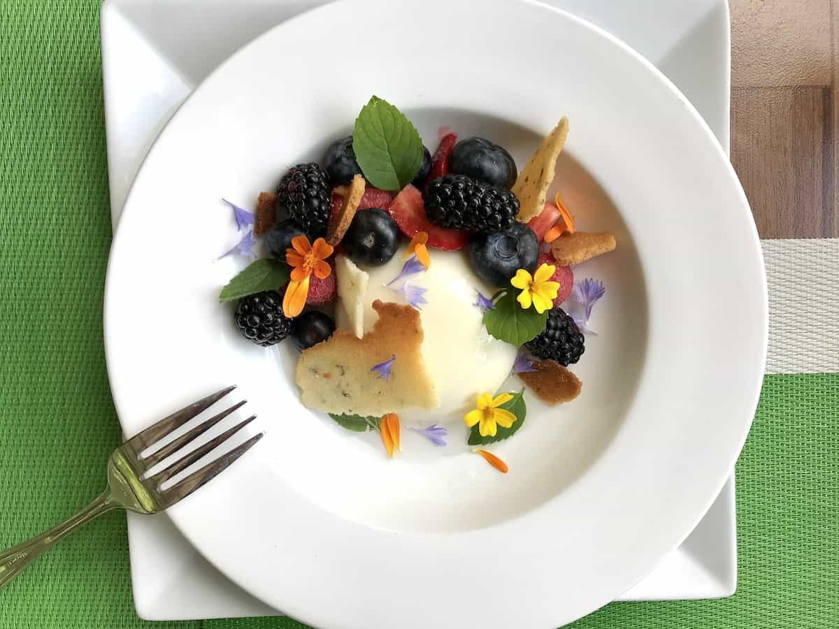A white dish with seasonal fruit panna cotta with pine needle syrup.