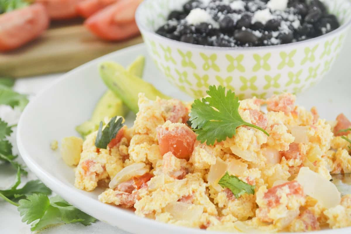 Close-up of scrambled eggs with tomato and onion on a white plate.
