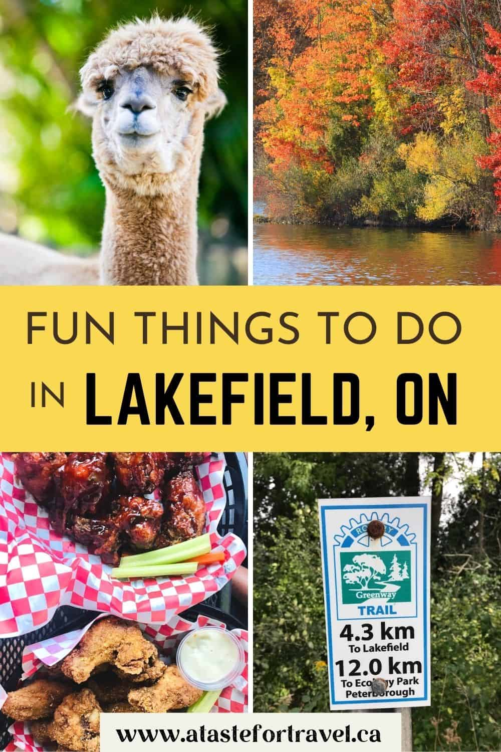 Collage of images of Lakefield, Ontario.